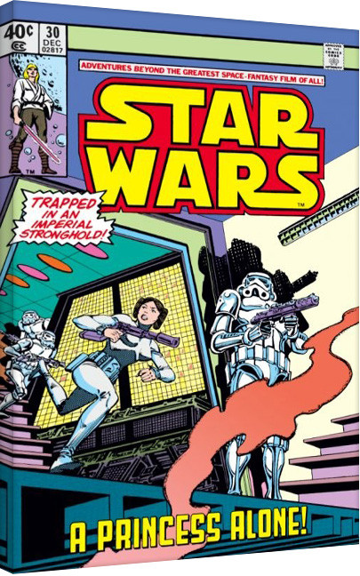 Bilden på canvas Star Wars - A Princess Alone