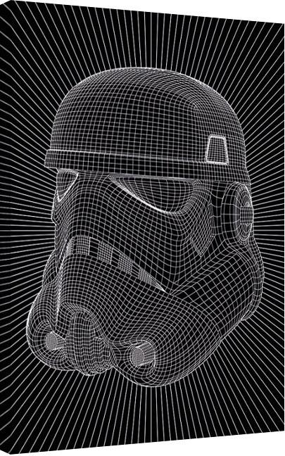 Bilden på canvas Star Wars - Stormtrooper Wire