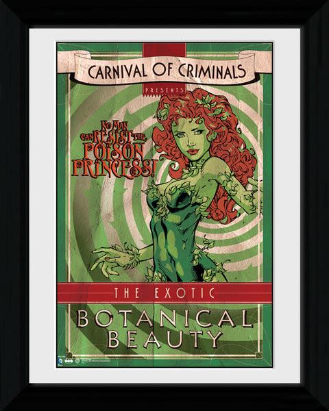 batman comic circus poison ivy gerahmte poster bilder kaufen bei europosters. Black Bedroom Furniture Sets. Home Design Ideas