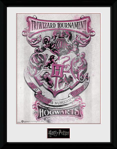 harry potter triwizard hogwarts gerahmte poster bilder kaufen bei europosters. Black Bedroom Furniture Sets. Home Design Ideas