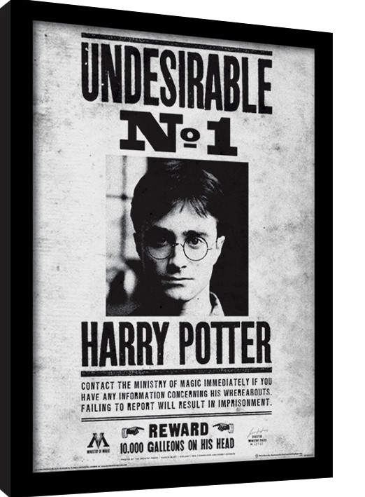 harry potter undesirable no1 gerahmte poster bilder kaufen bei europosters. Black Bedroom Furniture Sets. Home Design Ideas