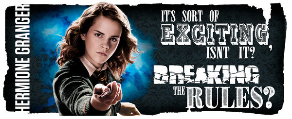 Harry Potter - Dynamic Hermione bögre