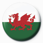 FLAG - WALES button