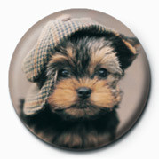 RACHAEL HALE - maxwell button