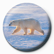 Button POLAR BEAR