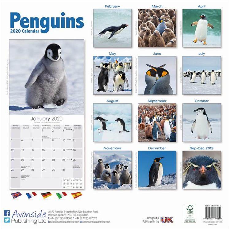 Penguins Calendar 2021