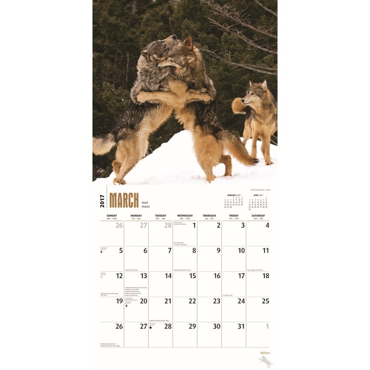 Wolves Calendar 2019