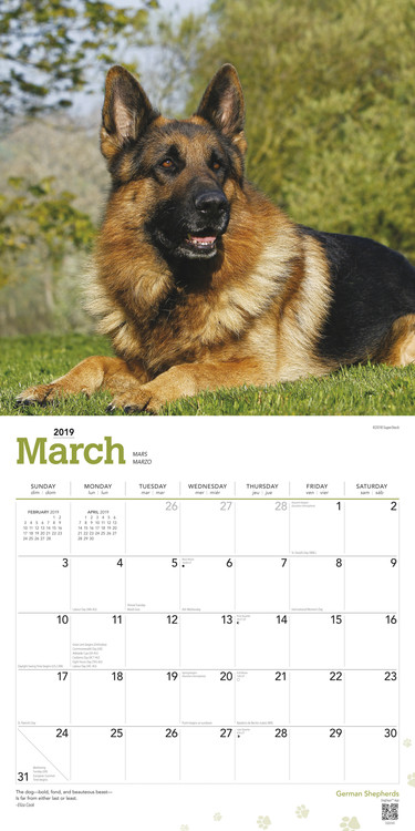 Calendario 2021 Cane da pastore tedesco   EuroPosters.it