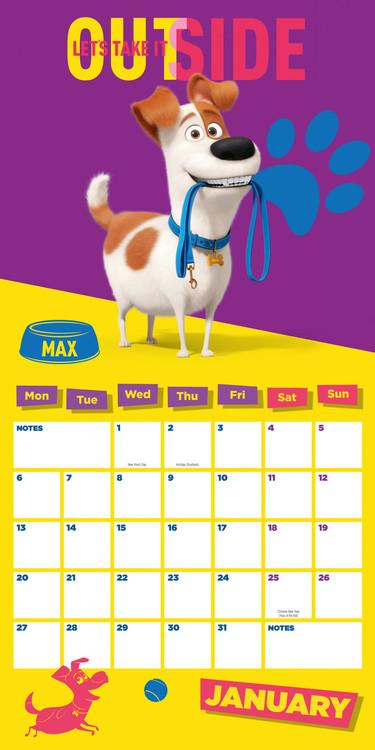 Calendario 2021 Pets: Vita da animali 2   EuroPosters.it