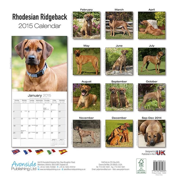 Calendario F2.Calendario 2020 Rhodesian Ridgeback