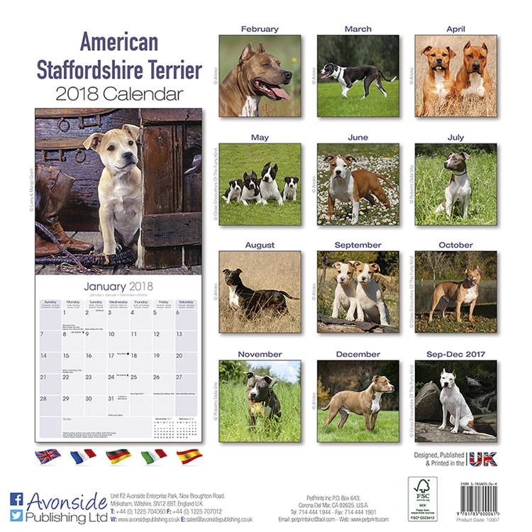 Calendar 2019  Amer. Staff Terrier