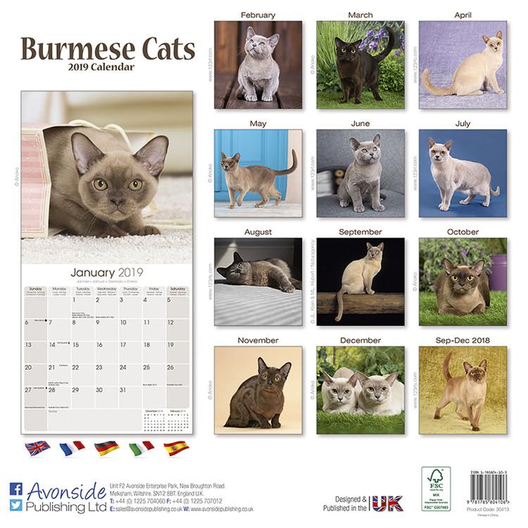 Calendar 2020  Burmese