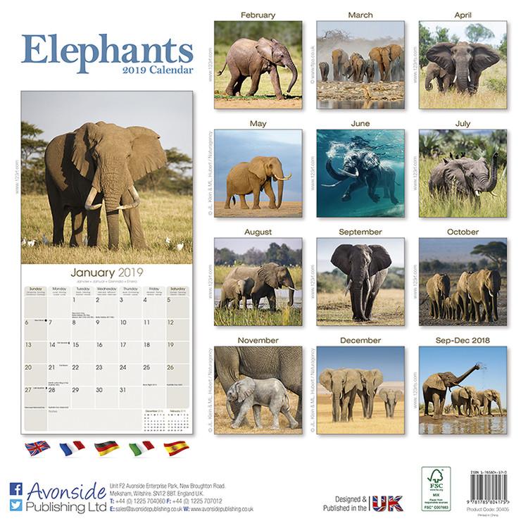 Calendar 2020  Elephants
