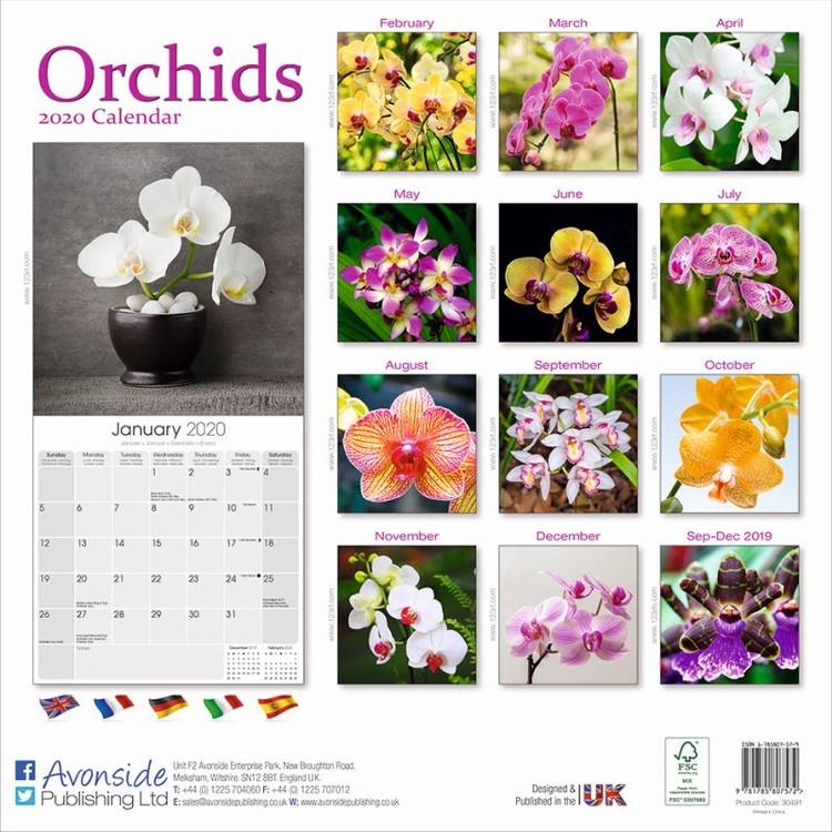 Calendar 2020 Orchids