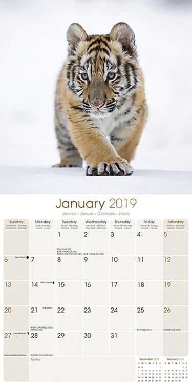 Calendario Tiger 2019.Calendar 2020 Tigers