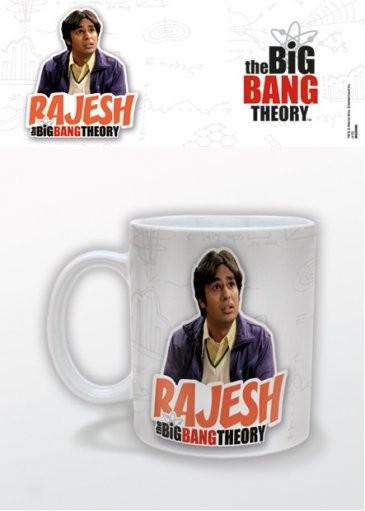 The Big Bang Theory - Rajesh Cană