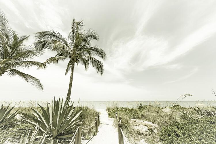 Carta da parati Alone at the beach | Vintage