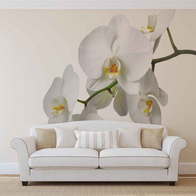 Carta da parati fiori orchidee natura bianco for Carta parati natura