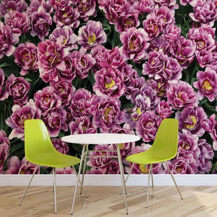 Carta da parati fioritura fiori viola for Carta parati fiori