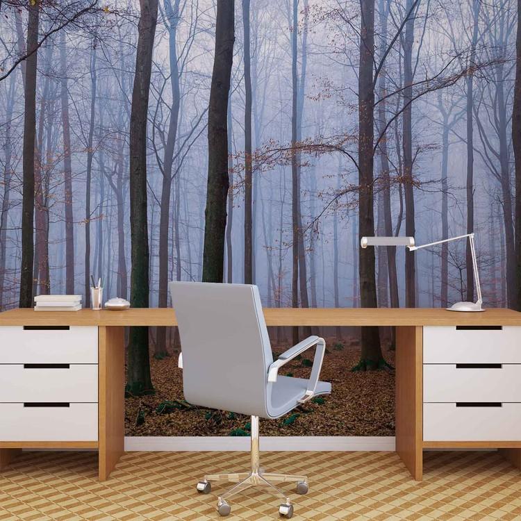 Carta da parati foresta legno natura for Carta parati natura