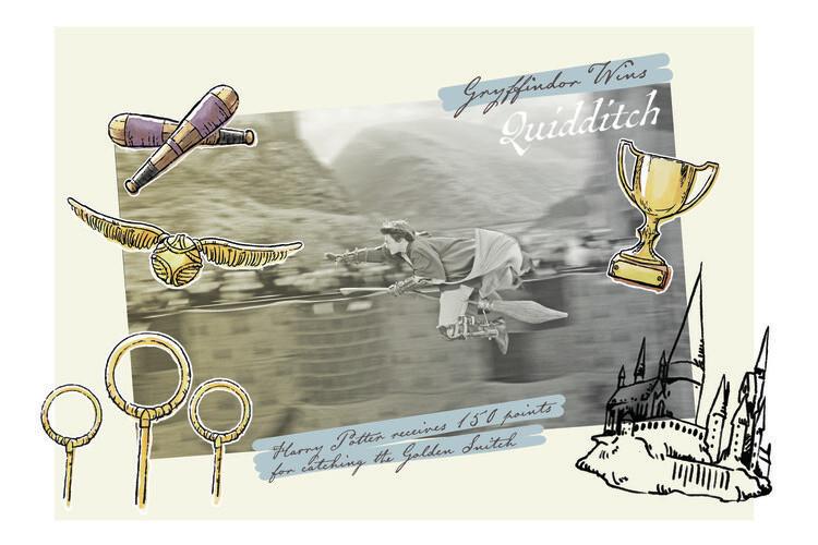 Carta da parati Harry Potter - Grifondoro vince il Quidditch