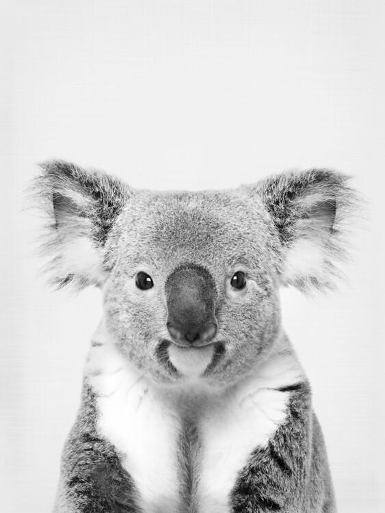 Carta da parati Koala