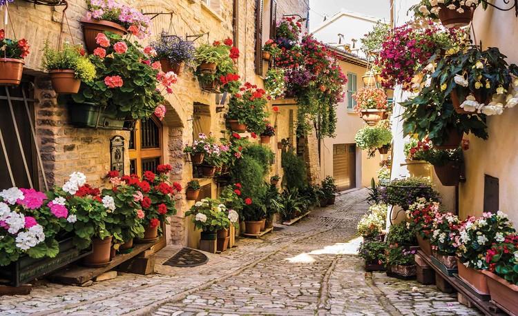Carta da parati  Mediterraneo con Fiori