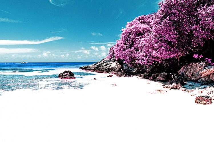Carta da parati Peaceful Paradise