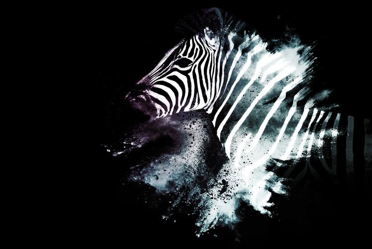 Carta da parati The Zebra