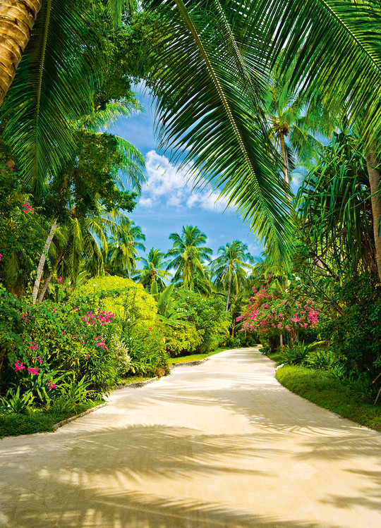 Carta da parati TROPICAL PATHWAY
