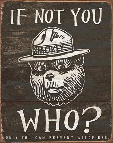 Cartel de metal SMOKEY BEAR - If Not You