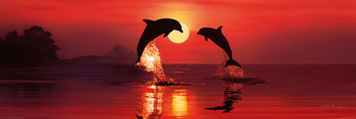 CHRISTIAN R.LASSEN - dolphin dawn - плакат (poster)