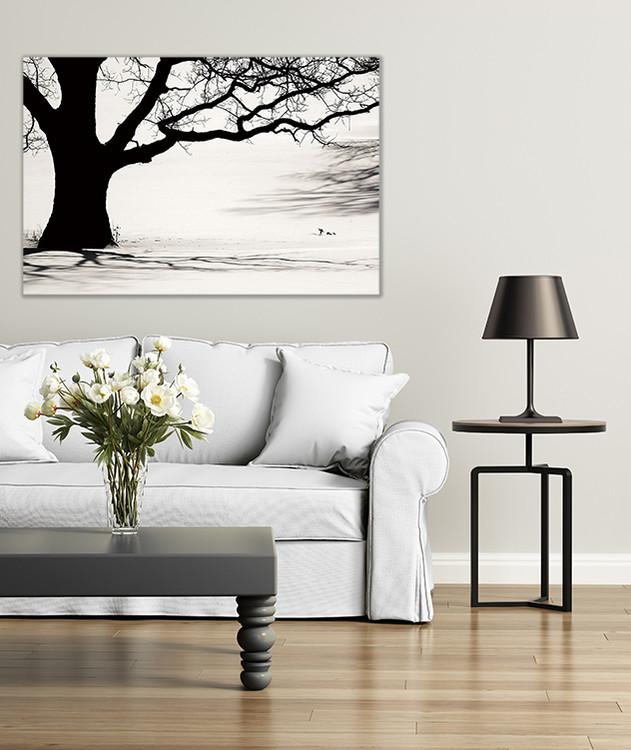 Cuadro en vidrio Tree - Black and White