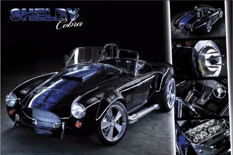 Easton - cobra - плакат (poster)