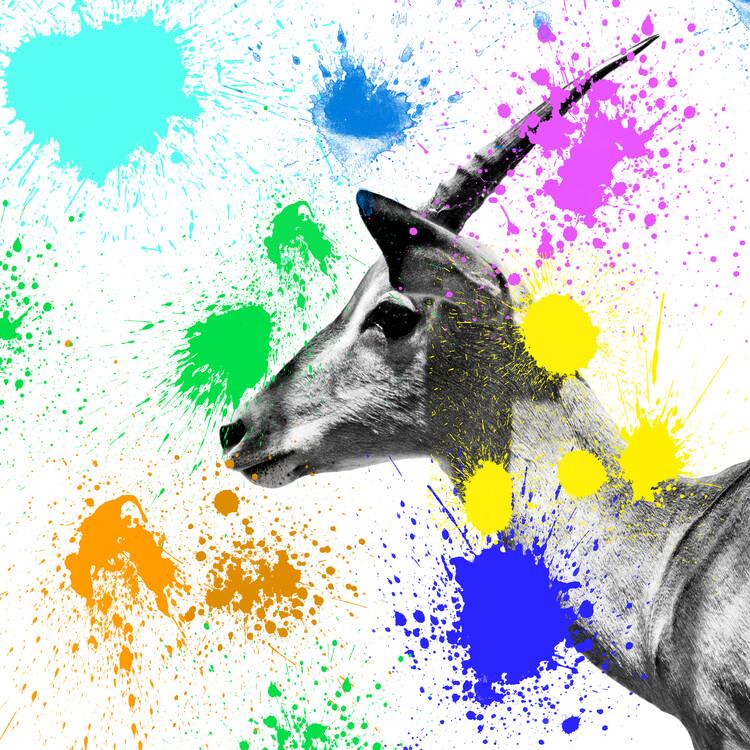 Exklusiva konstfoton Antelope IV