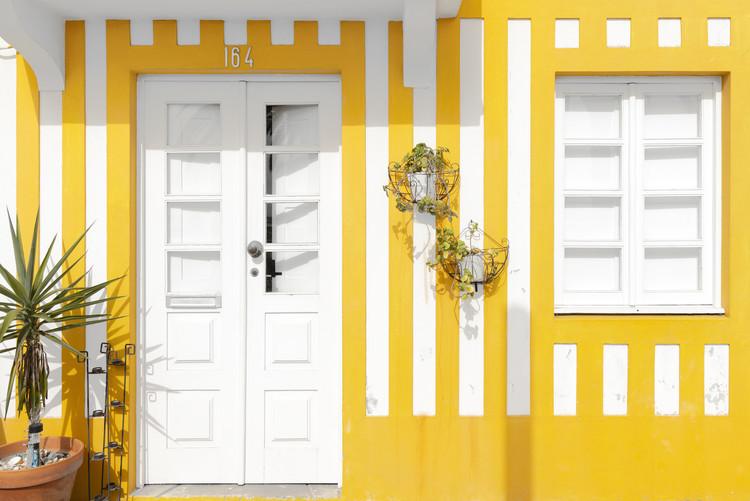 Exklusiva konstfoton Costa Nova Yellow Facade