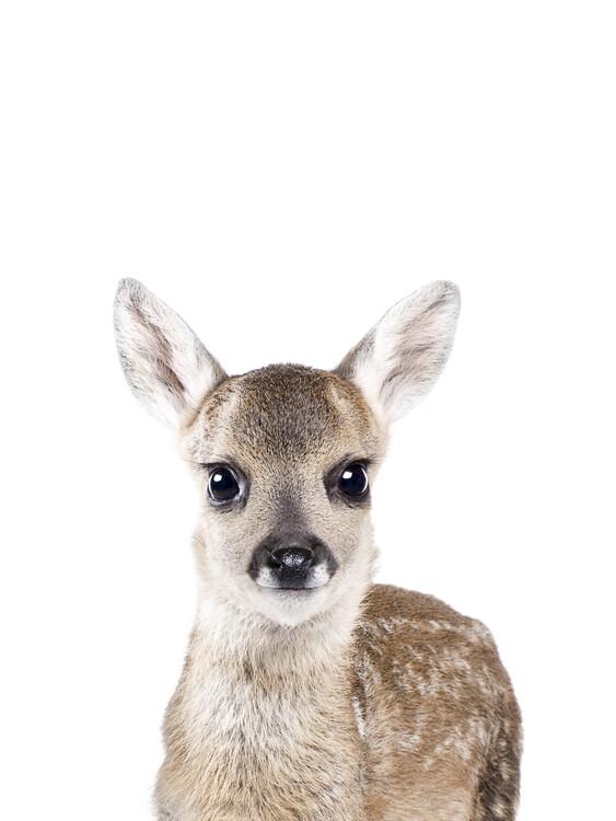 Exklusiva konstfoton Deer 1
