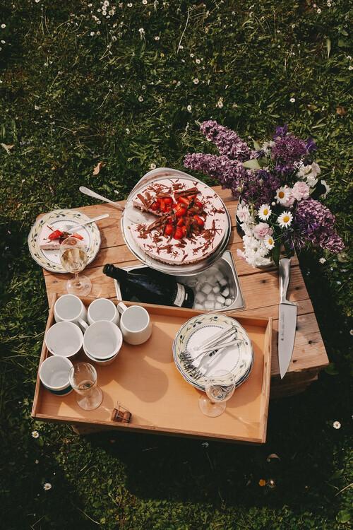 Exklusiva konstfoton Family picnic