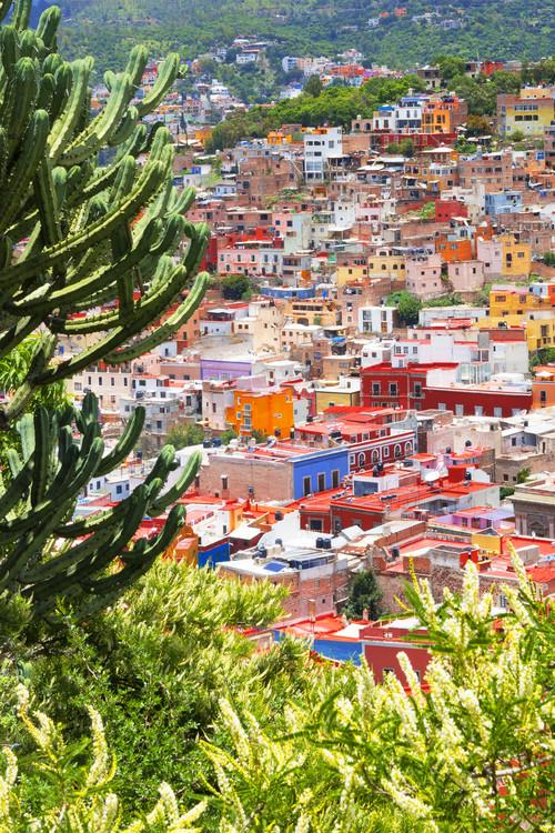 Exklusiva konstfoton Summer to Guanajuato