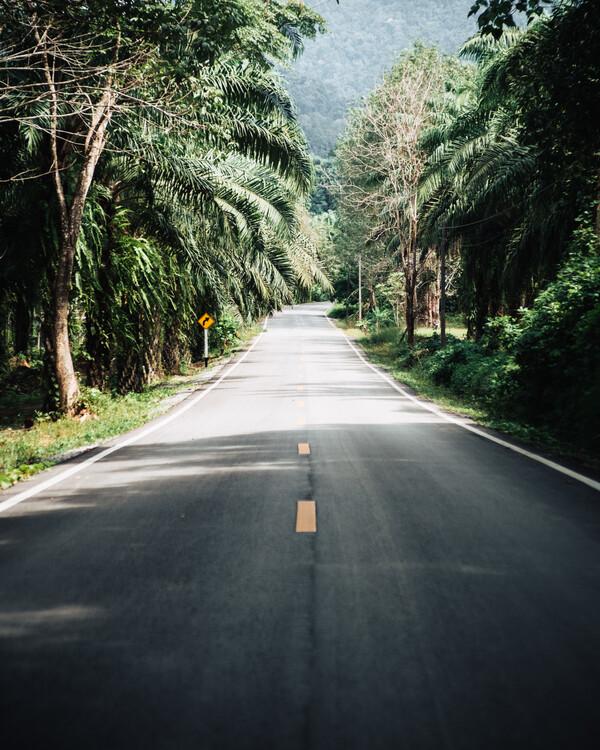 Exklusiva konstfoton The Good Road