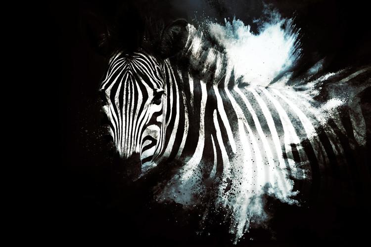 Exklusiva konstfoton The Zebra II