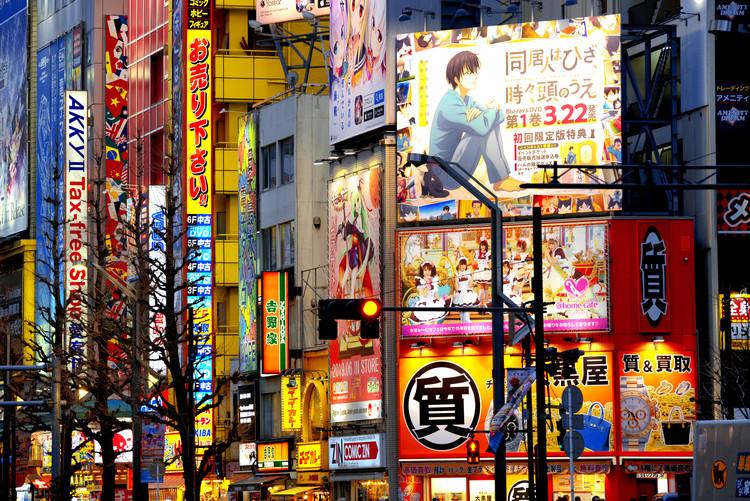 Exklusiva konstfoton Tokyo Akihabara