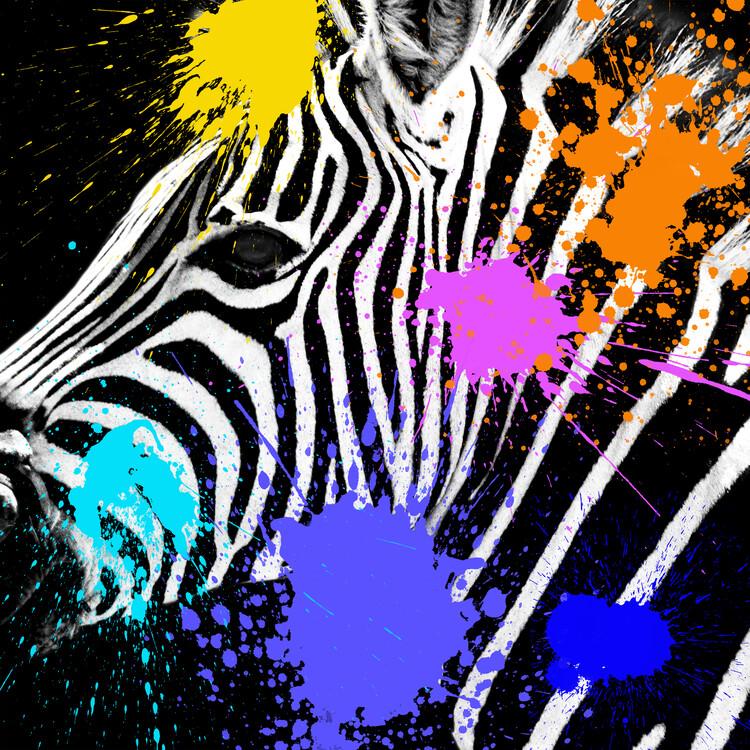 Exklusiva konstfoton Zebra Portrait