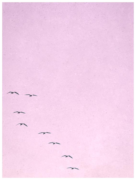 Exklusiva konstfoton borderpinkbirds