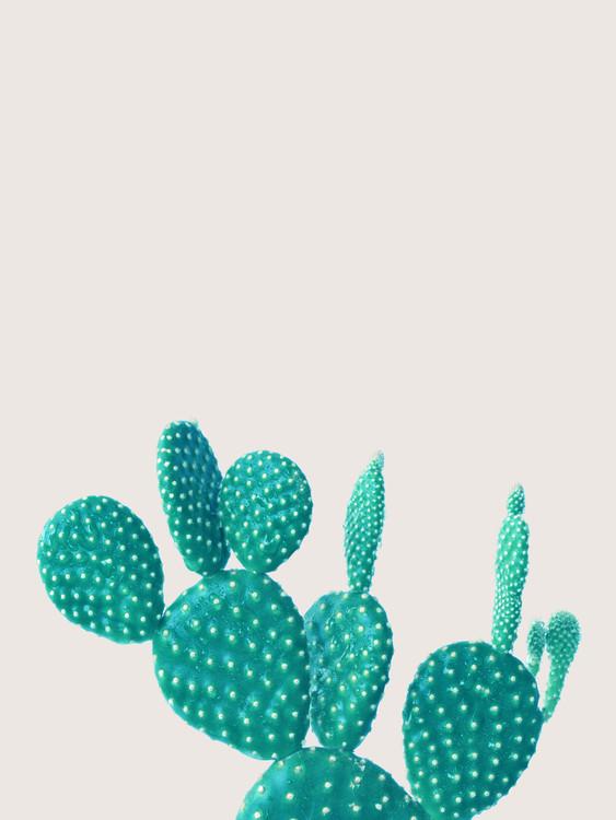 Exklusiva konstfoton cactus 5