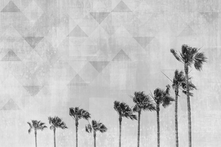 Exklusiva konstfoton California Vibes In Black & White