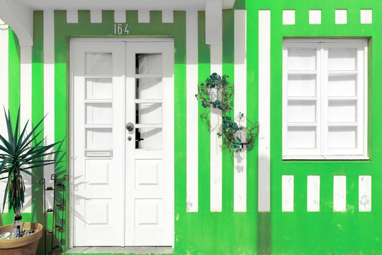 Exklusiva konstfoton Costa Nova Green Facade
