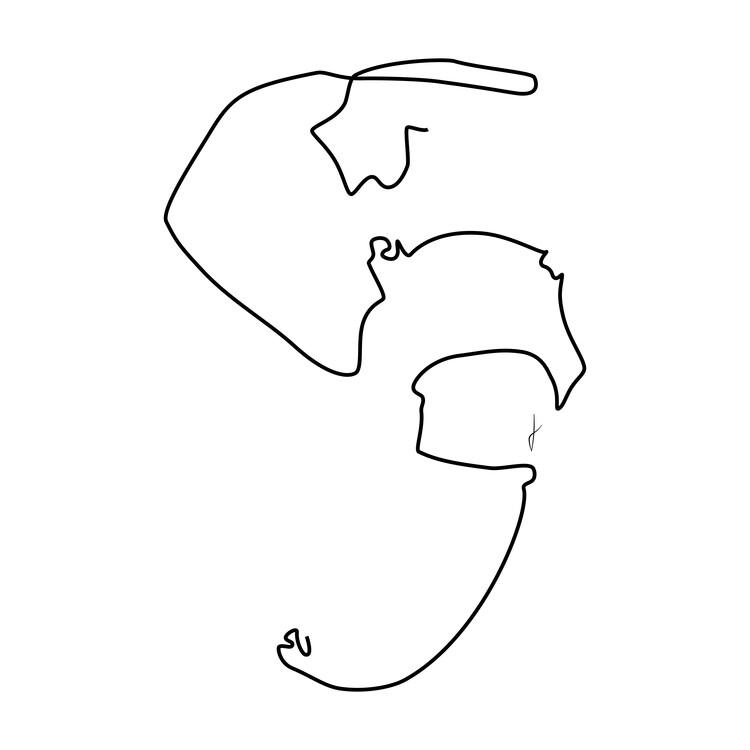 Exklusiva konstfoton Elefante