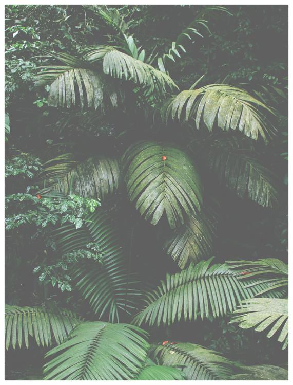 Exklusiva konstfoton green leaves large