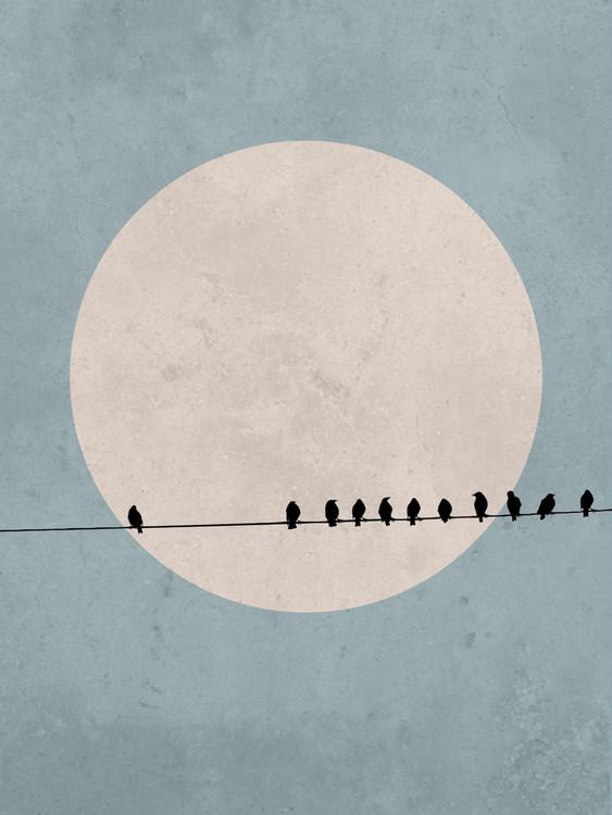 Exklusiva konstfoton moonbird3